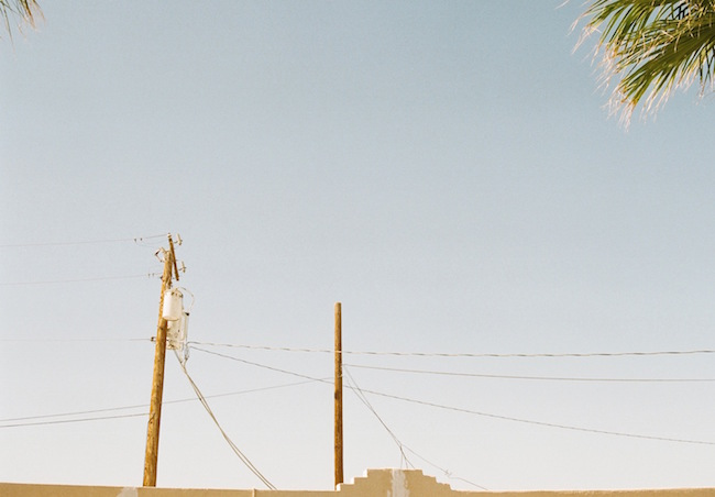 lorena-lohr-untitled-palm-and-telephone-pole